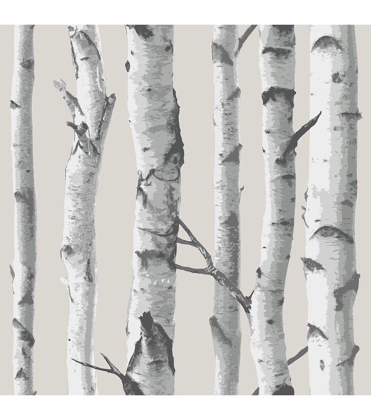 25 Best Ideas About Birch Tree Wallpaper On Pinterest