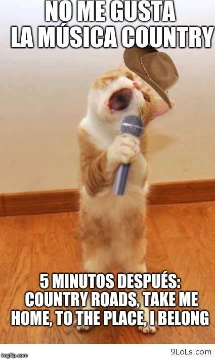 country roads cat meme