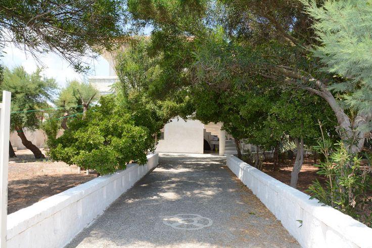 Villa Rosanna, con giardino e accesso diretto alla spiaggia di Punta Prosciutto.