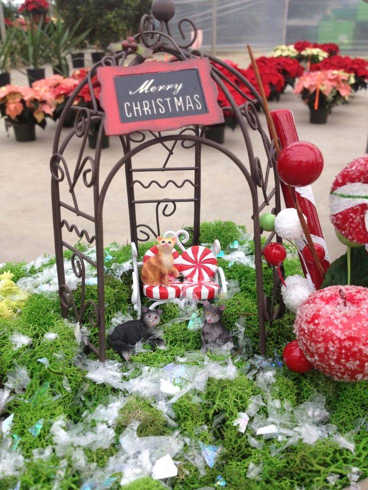 A cute little winter garden welcoming Christmas