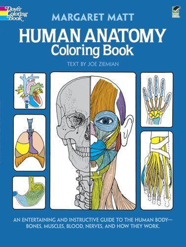 Ocular Anatomy Coloring Book : 74 best anatomy images on pinterest