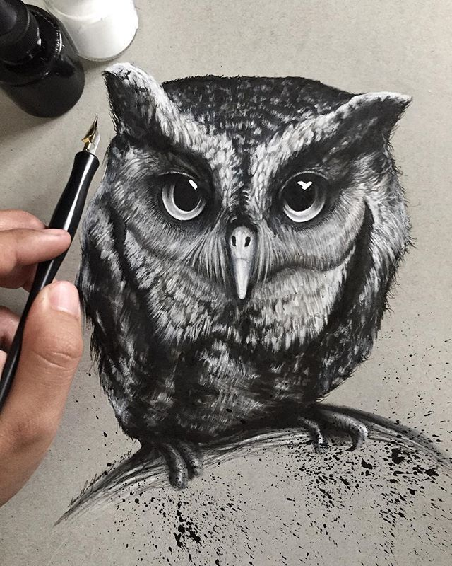 Finished Oliver, an Eastern Screech Owl. Thanks @worldbirdsanctuary for letting me draw him. such a beautiful owl