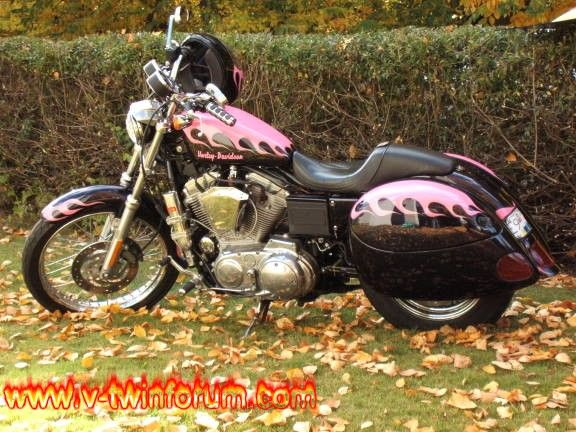 """""""IF"""" I ever get my own bike, this is what I want.   Love the pink flames"""