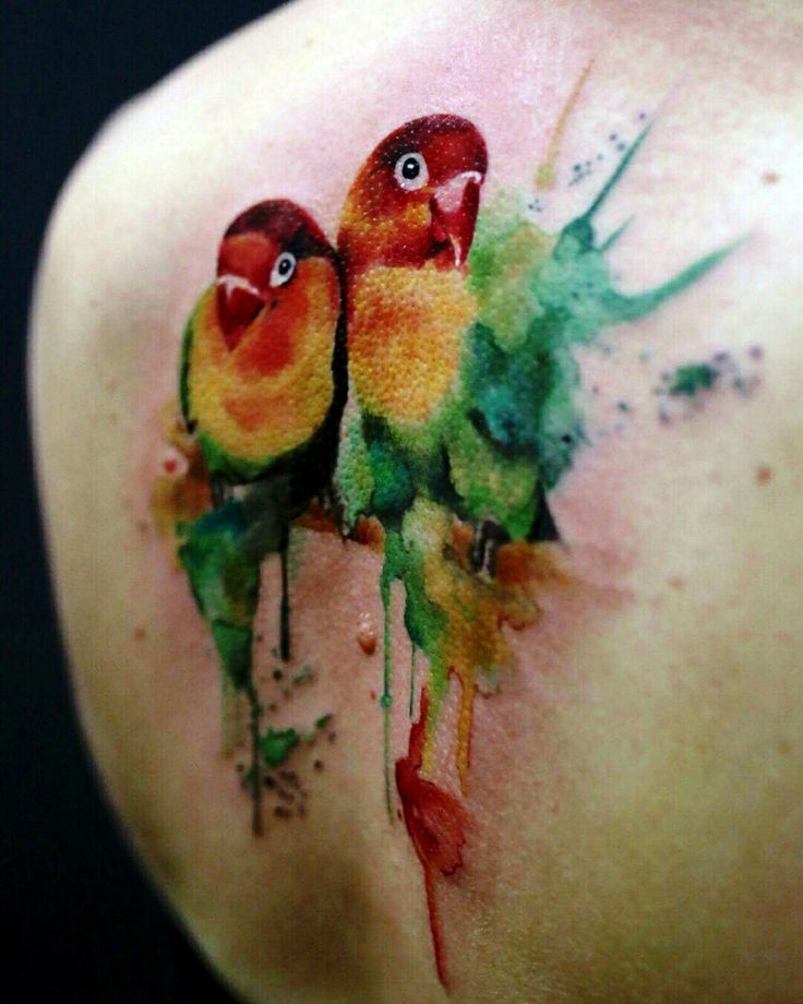 Watercolor Parrots by Jays tattoos and art