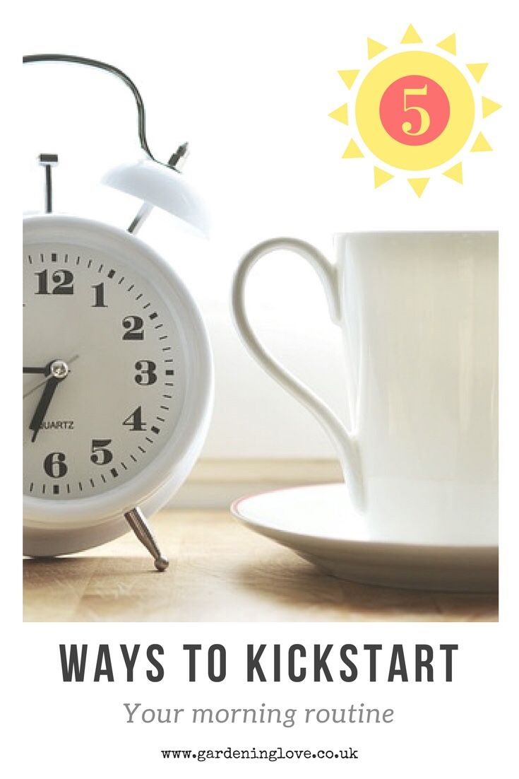 5 Ways To Kickstart Your Morning Routine - Gardening Love  ||  Our morning routine has a huge impact on how the rest of our day pans out. Kickstarting the day with positive new habits will help you make the most of your day. Here are 5 ways to energise your morning routine helping you to leave the house raring to go. http://www.gardeninglove.co.uk/morning-routine/?utm_campaign=crowdfire&utm_content=crowdfire&utm_medium=social&utm_source=pinterest