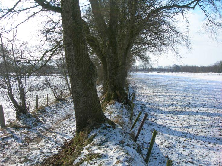 Dykswâl . In de winter