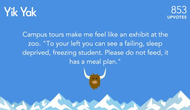 The campus safari guide. | The 26 Most Popular Yik Yak Posts Of 2014 these speak to me on a personal level