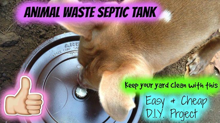 Diy dog septic tank diy dog stuff septic tank cheap diy