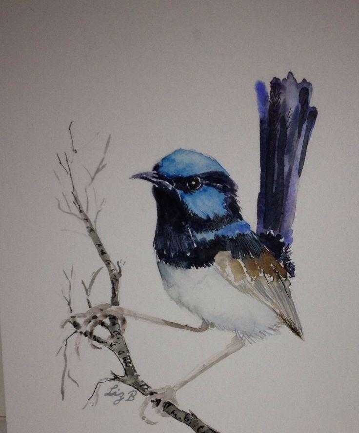 'Blue Wren Male' by Liz Butcher