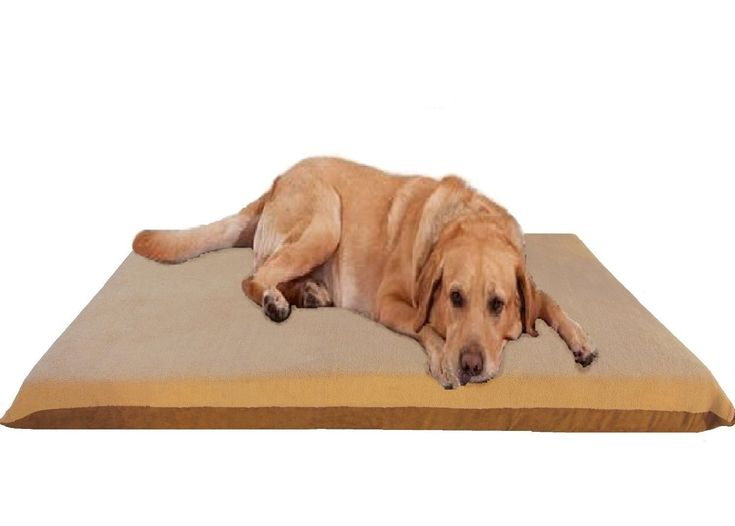 """47""""X29""""X4"""" Beige Color Orthopedic Waterproof Memory Foam Pet Bed Pad for Extra Large dog crate size 48""""X30"""" with 2 external covers"""