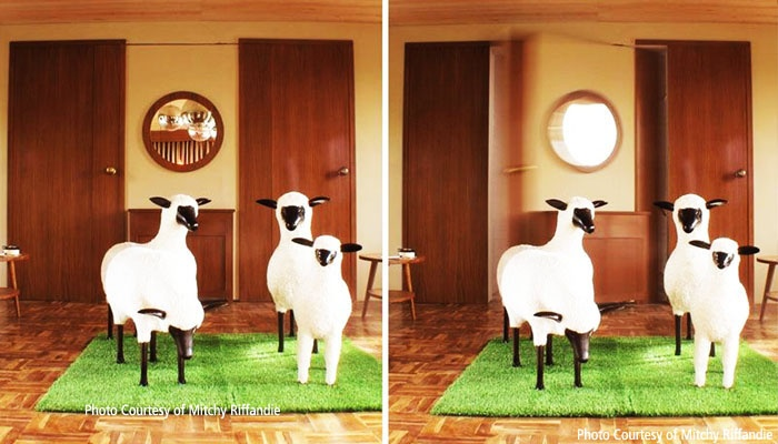 The Sheep for Stevie 6 Hotel