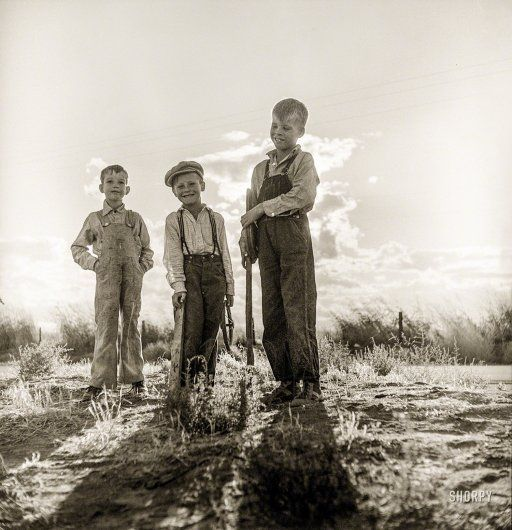 "Golden (State) boys. November 1938. ""Children of [Dust Bowl] refugee families now on Works Progress Administration. They live in tents on the flats outside of Bakersfield, California."" Photo by Dorothea Lange."