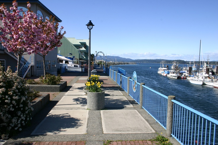 Downtown Campbell River, BC on a beautiful spring day. Overlooking the Government marina.