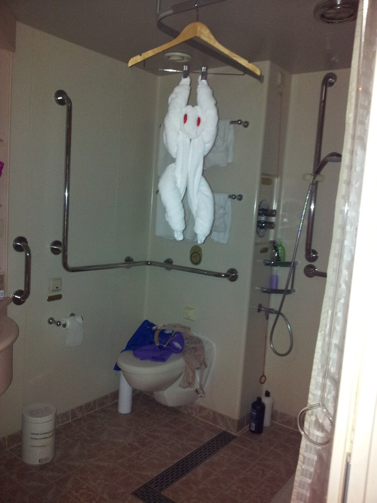 Towel monkey, Sea Princess, 2011 Xmas cruise around New Zealand,   Scared us silly when we opened bathroom door, lol