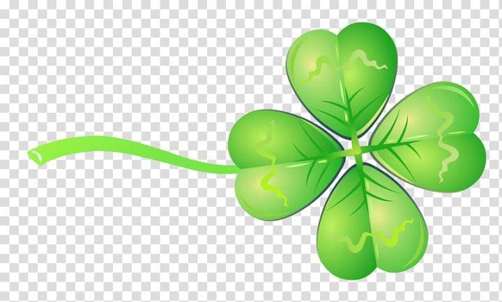 Four Leaf Clover Drawing Green Clover Ribbon Transparent Background Png Clipart Four Leaf Clover Drawing Green Leaf Background Clover Leaf