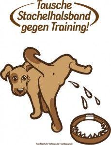 """Infos zur Aktion """"Tausche Stachelhalsband gegen Training"""" - mehr Infos dazu in unserem Hundeblog unter http://www.diehundewiese.de/hundeerziehung/tausche-stachelhalsband-gegen-training-aktion/"""