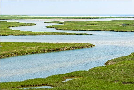 Fort Hill Salt Marsh Wellfleet Cape Cod National by FrigidLight, $10.00