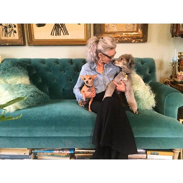 Goldie and Winks in my arms.  What could possibly be better?  Thank you Klee @8lbpooch for this photo and for your charming and perfect videos for @RODINoliolusso.