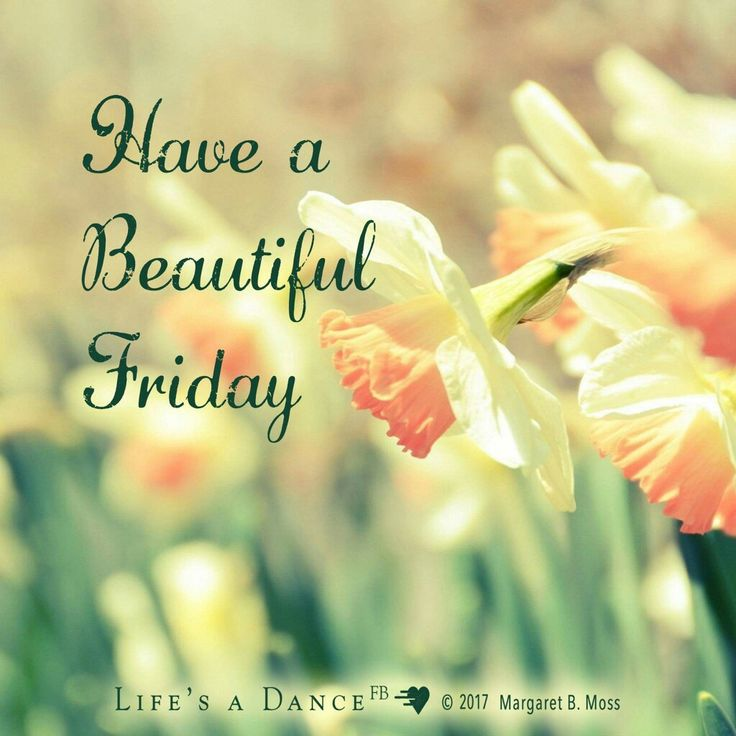 Best 25+ Friday Morning Quotes Ideas On Pinterest