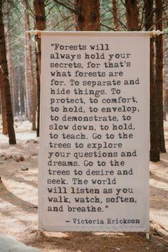 Como nos contos de fadas: casamento na floresta! ♥