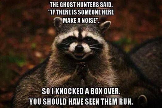100 best ideas about ghost stories 2015 on pinterest
