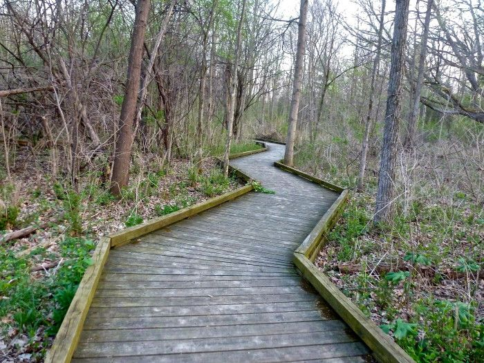 5) Parker Mill County Park, Ann Arbor........10 TRAILS IN MICHIGAN