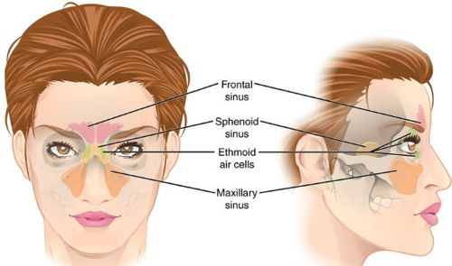 Natural Ways To Get Rid Of Congested Nose