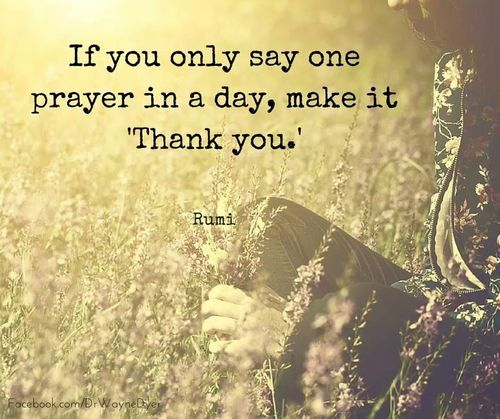 """If you only say one prayer in a day, make it """"Thank you.""""-Rumi"""