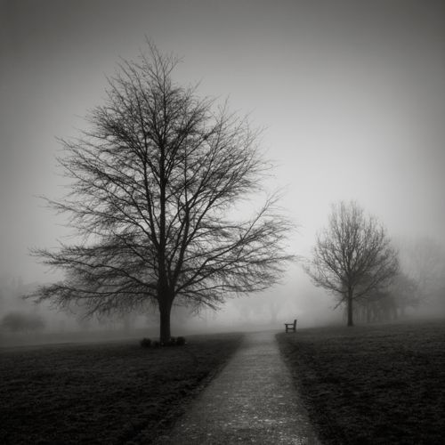 .Andy Brown, White Photography, Artworks, Black And White, Art Photography, Quiet Seats, Haunted Beautiful, White Art, Artists Splendor