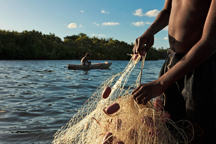 13 best brilliant photography images on pinterest black for Fishing in vanuatu
