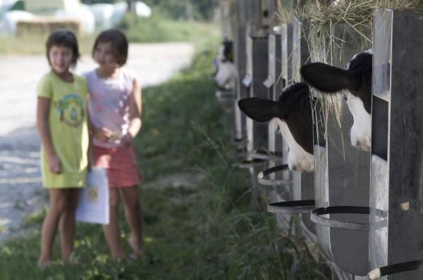 #Vacanze estive per #bambini in #Trentino, #TermediComano - #terme #vacanzeperfamiglie, #animazioneperbambini, #visitacomano,