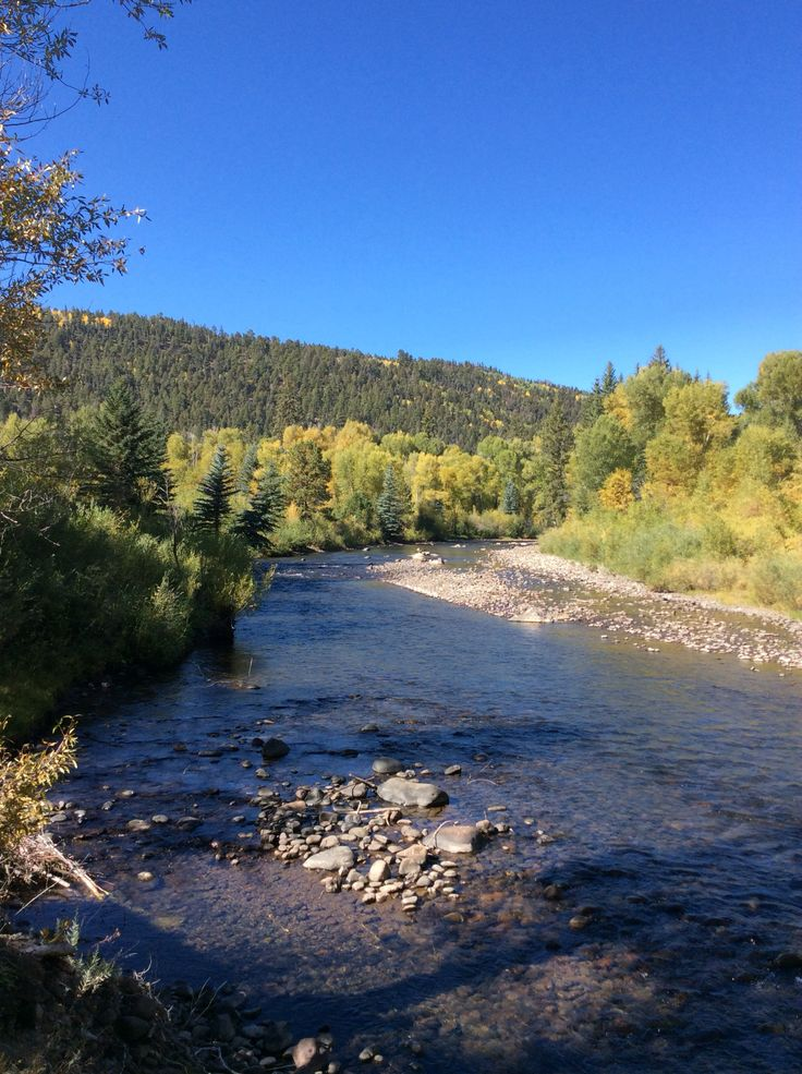 293 best conejos river images on pinterest rabbits the for Aspen fly fishing