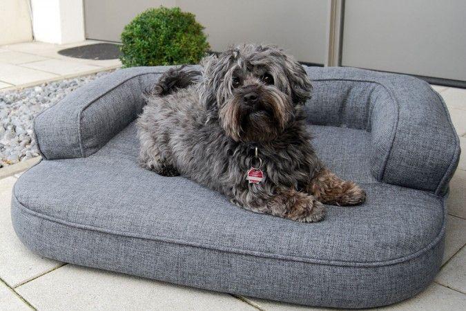 tierlando - Orthopädisches Hundebett LOTTE Ortho Plus