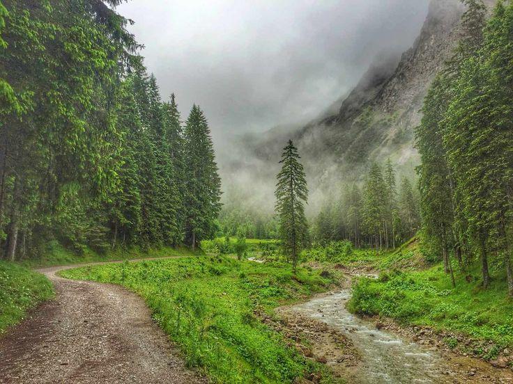 Auf dem Weg zur Fluchtalpe