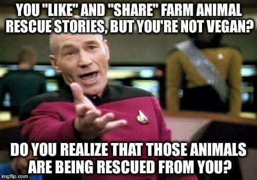 If you're not vegan, you are part of the factory farming problem. do you realize that?