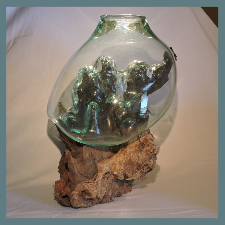 1000 Images About Terraniums On Pinterest Wood