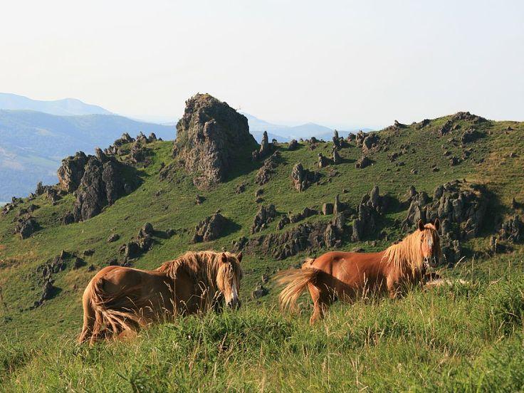 Abritel location maison dans le Pays Basque  « ESKITZA » est un authentique kayolar (cabane de berger) lové dans la montagne basque, à 800m d'altitude, mais d'accès très aisé.