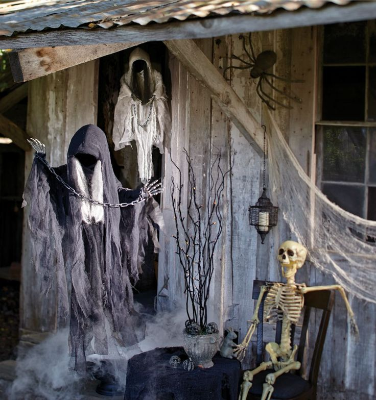 enter our haunting halloween shop featuring cost plus world markets creepy collection worldmarket