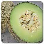 Organic Rocky Ford Melon