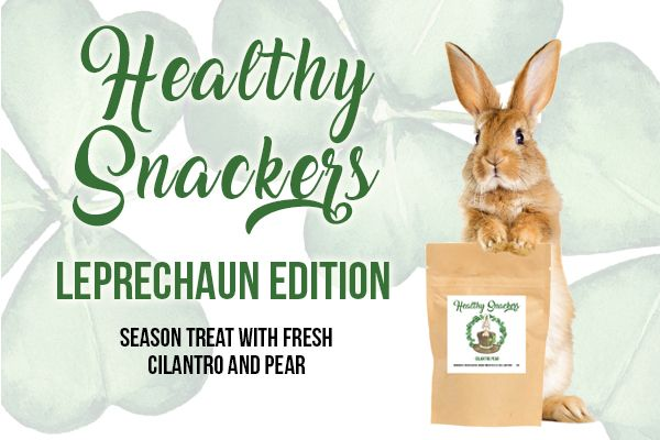 Small Pet Select goes even greener!  Fresh Cilantro and Pear Healthy Snackers are here - with stickers of Belinda looking Irish.  Add even more green with the special bundles. Healthy Snackers, Leprechaun Edition: https://loom.ly/K85xRrs Leprechaun Special: https://loom.ly/6jNxTZw Leprechaun Extra Special: https://loom.ly/iFJzww4