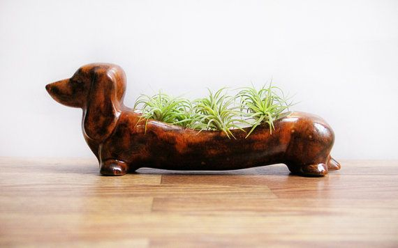 66 Best Images About Zodiac Animals Art On Pinterest Planters Ceramics And Black Sheep