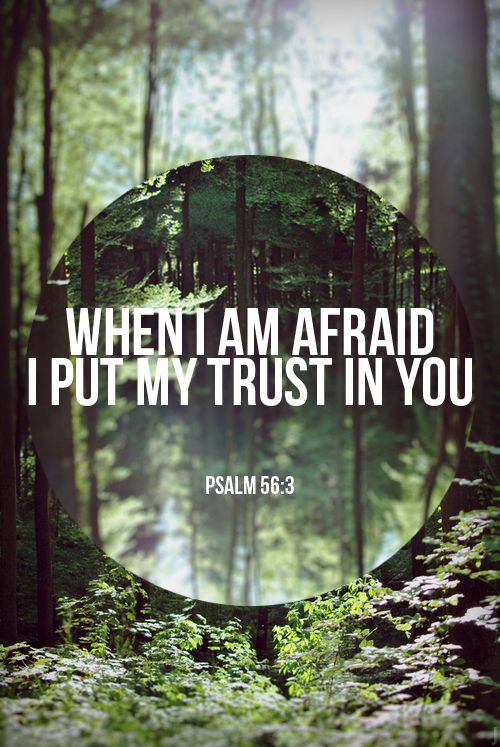 Psalm 56:3-4 When I am afraid, I put my trust in you. In God, whose word I praise-- in God I trust and am not afraid. What can mere mortals do to me?