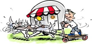 Limburg - Grashoek, camping 't Haasje (hondenvriendelijk)