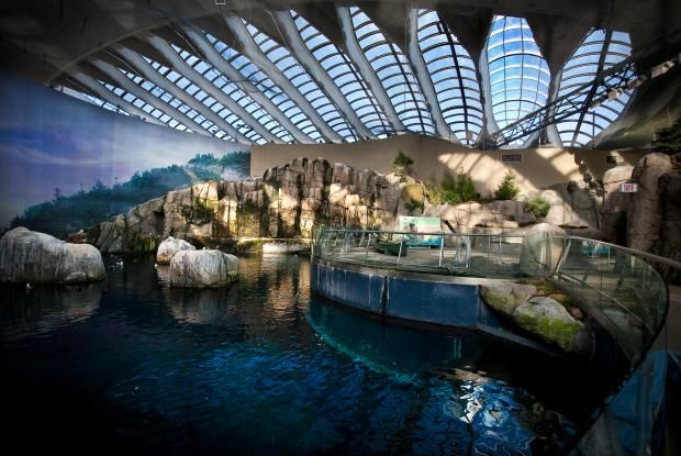 The Montréal Biodôme recreates some of the most beautiful ecosystems of the Americas.