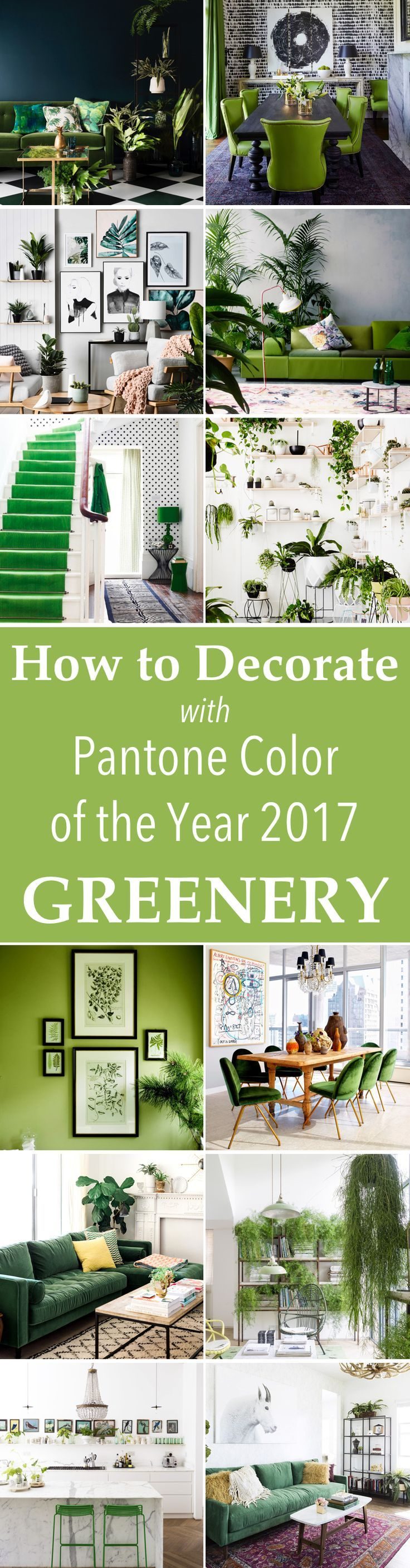 How To Decorate With Pantone Color Of The Year GREENERY! You can update your home with this latest color trend - Greenery!