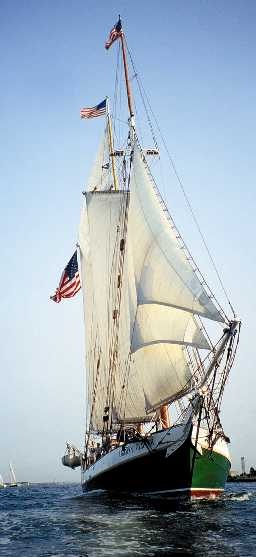 Liberty Fleet of Tall Ships-daily Sails in Boston Harbor