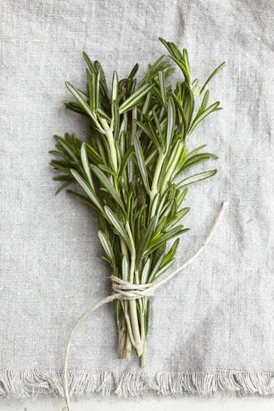 Fresh cut rosemary - one of the complex fragrance notes in Aesthetic Content's Fumoso Cedar Luxury Scented Soy Candle.  www.aestheticcontent.com