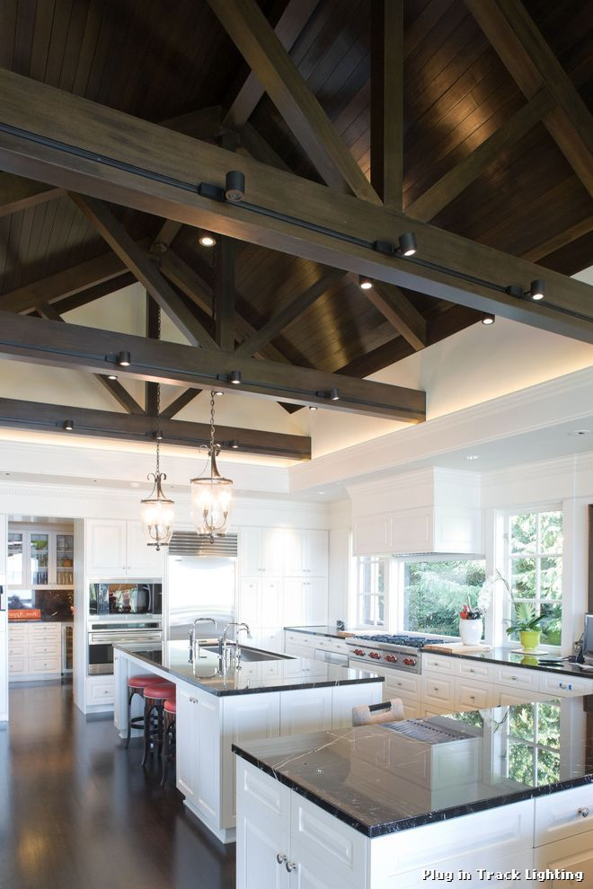 Ceiling Mount Track Lighting Contemporary Kitchen by