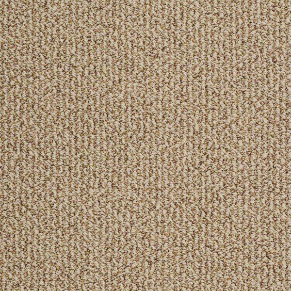 Take On The Trend B 0c104 Adobe Carpet Amp Carpeting