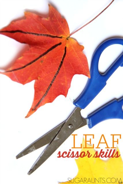 Practice scissor skills with Fall leaves to work on line awareness and scissor control.